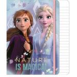 Disney Frozen Σημειωματάριο Α5 με λάστιχο, 80 φύλλων